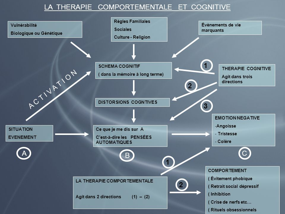 LA THERAPIE COMPORTEMENTALE ET COGNITIVE Vulnérabilité Biologique ou Génétique Règles Familiales Sociales Culture - Religion Évènements de vie marquan