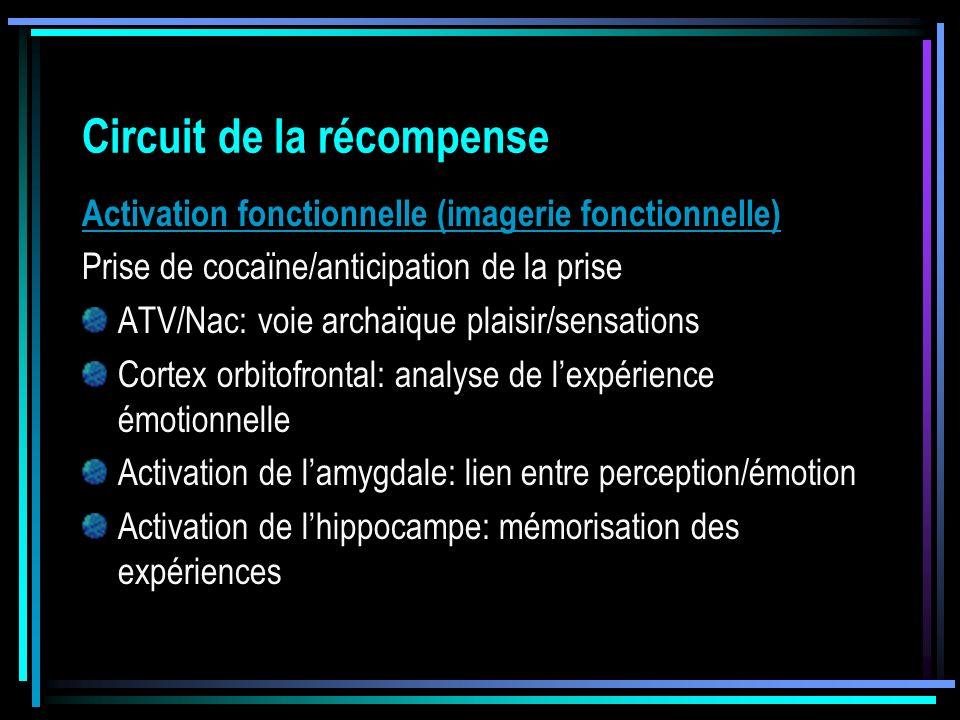 Activation fonctionnelle (imagerie fonctionnelle) Prise de cocaïne/anticipation de la prise ATV/Nac: voie archaïque plaisir/sensations Cortex orbitofr