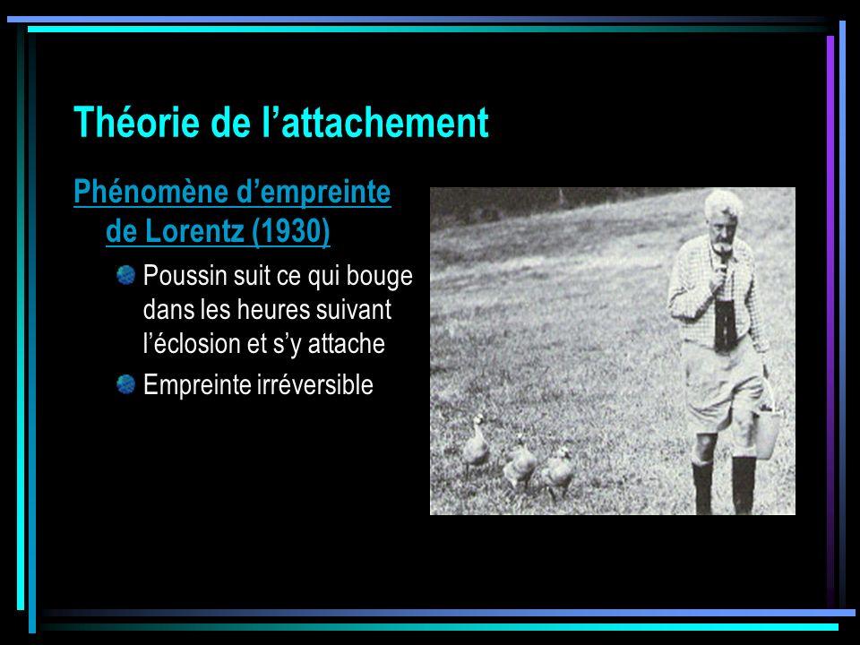 Théorie de lattachement Phénomène dempreinte de Lorentz (1930) Poussin suit ce qui bouge dans les heures suivant léclosion et sy attache Empreinte irr