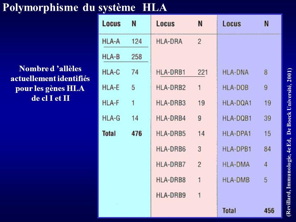 (KUBY, Immunologie, ed DUNOD, 2001) CPAg = DC présente dans le greffon Sensibilisation par voie directe Ggl lymphatique du Receveur + AlloAc DC do
