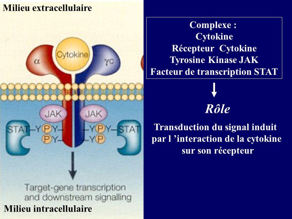 Complexe : Cytokine Récepteur Cytokine Tyrosine Kinase JAK Facteur de transcription STAT Transduction du signal induit par l interaction de la cytokine sur son récepteur Rôle Milieu extracellulaire Milieu intracellulaire