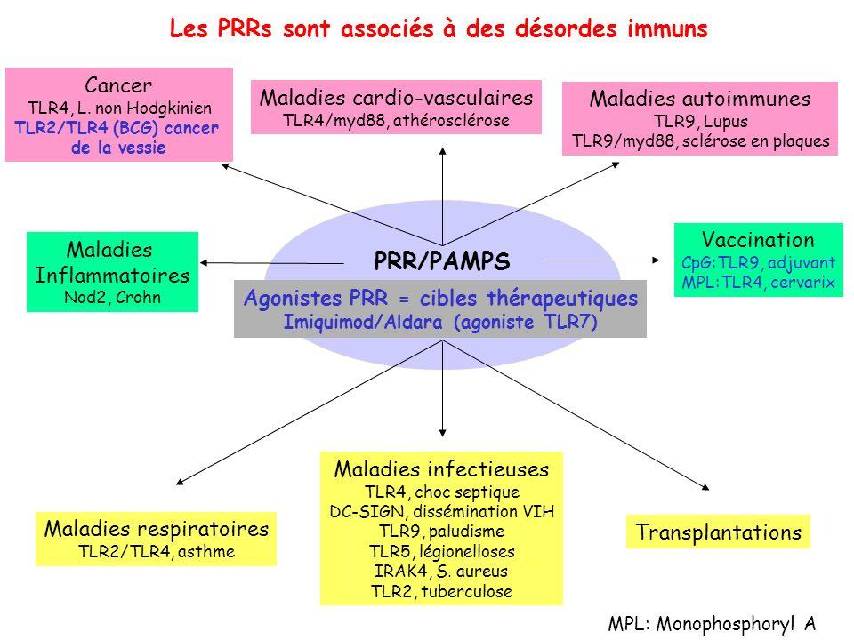 Cancer TLR4, L. non Hodgkinien TLR2/TLR4 (BCG) cancer de la vessie Maladies cardio-vasculaires TLR4/myd88, athérosclérose Maladies respiratoires TLR2/