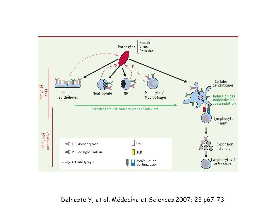 Delneste Y, et al. Médecine et Sciences 2007; 23 p67-73
