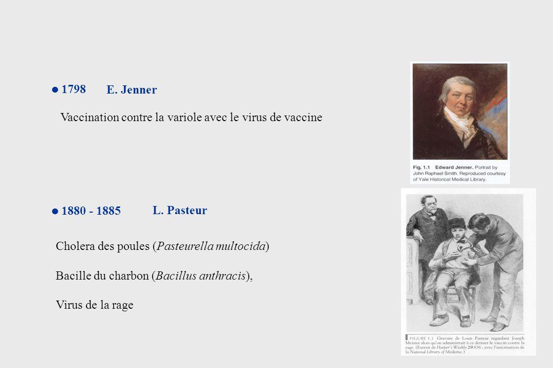 Efficacité de la vaccination Variole10 millions0 (depuis 1977) Poliomyélite 350 000800 (1998-2002) Diphtérie 45 000< 100 Tétanos 20 - 50 millions250 000 -500 000 AvantAprès Nombre de cas annuels dans la monde éradication éradication?