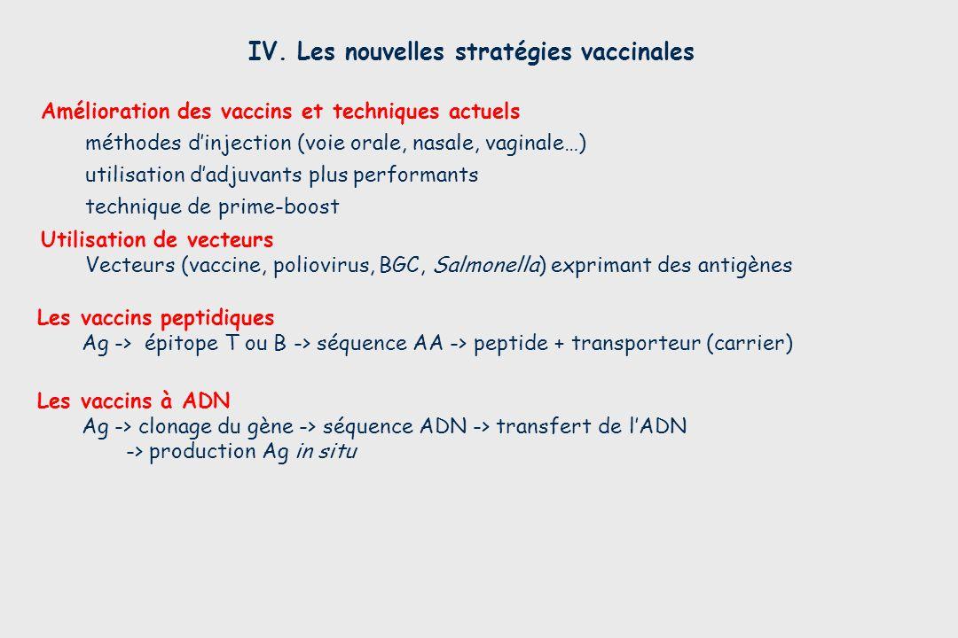 IV. Les nouvelles stratégies vaccinales Les vaccins à ADN Ag -> clonage du gène -> séquence ADN -> transfert de lADN -> production Ag in situ Les vacc