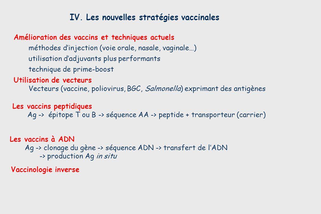 Vaccinologie inverse IV. Les nouvelles stratégies vaccinales Les vaccins à ADN Ag -> clonage du gène -> séquence ADN -> transfert de lADN -> productio