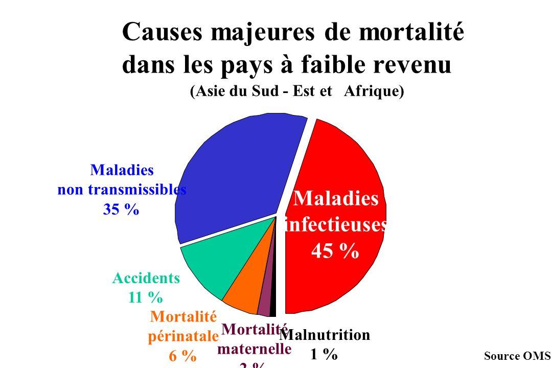 Maladies infectieuses 45 % Accidents 11 % Mortalité maternelle 2 % Causes majeures de mortalité dans les pays à faible revenu (Asie du Sud - Est et Af