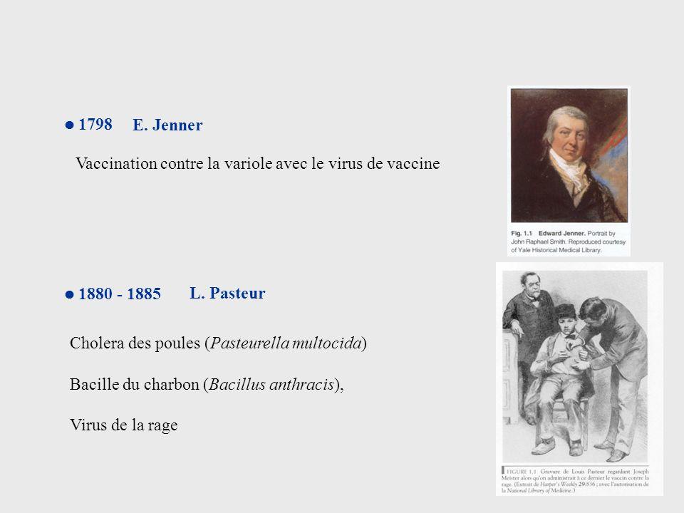 1798 E. Jenner Vaccination contre la variole avec le virus de vaccine 1880 - 1885 L. Pasteur Cholera des poules (Pasteurella multocida) Bacille du cha