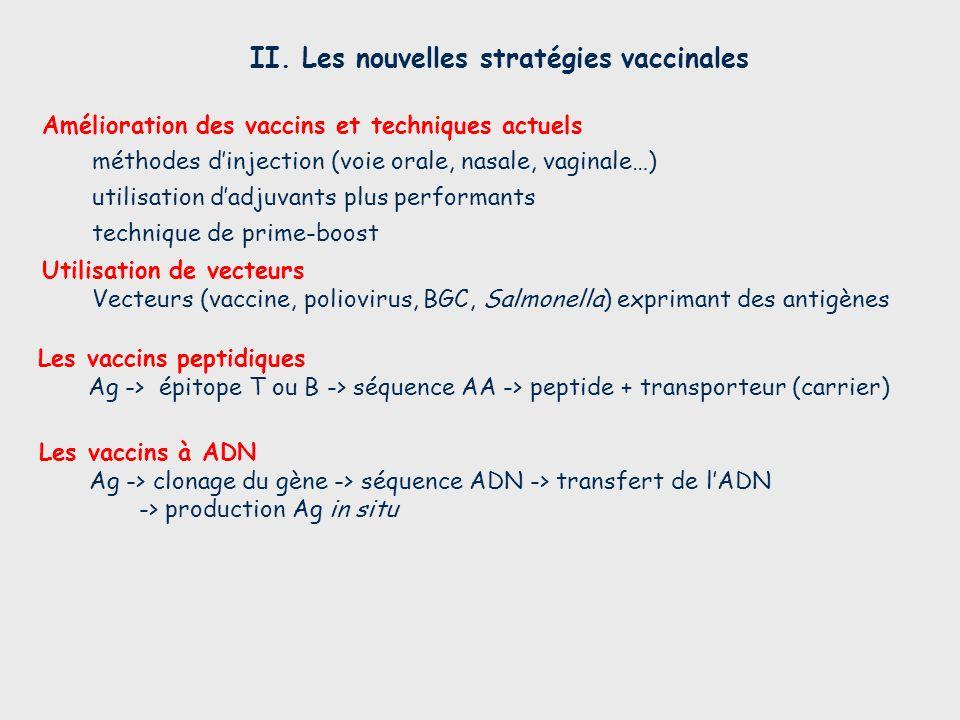 II. Les nouvelles stratégies vaccinales Les vaccins à ADN Ag -> clonage du gène -> séquence ADN -> transfert de lADN -> production Ag in situ Les vacc