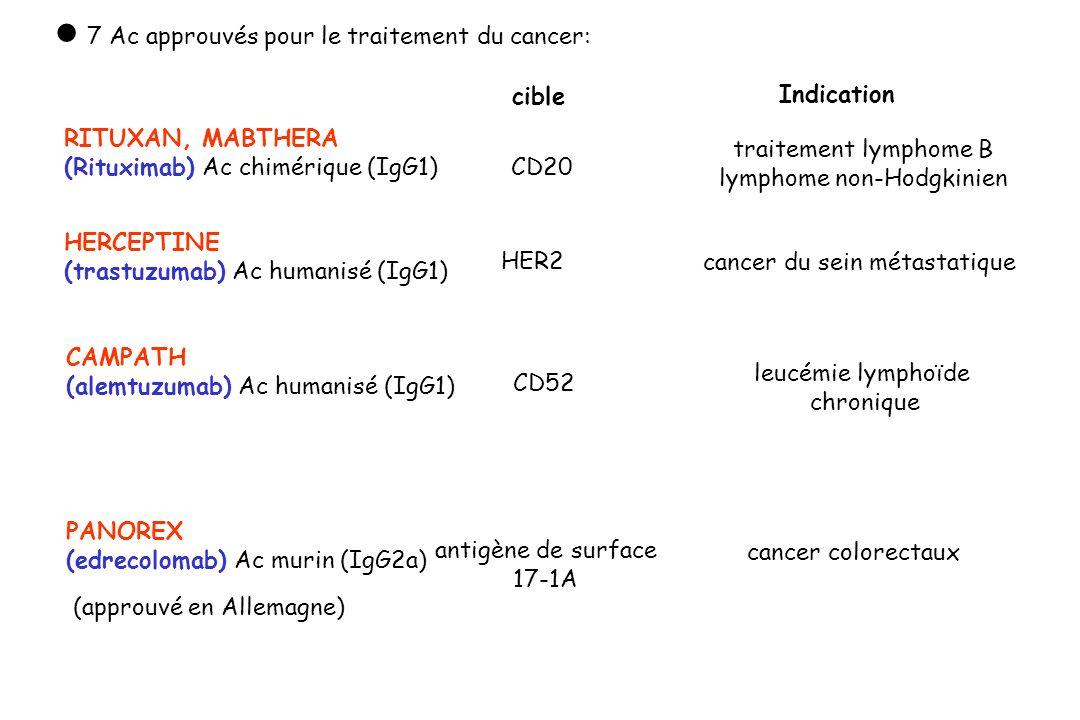 cancer du sein métastatique HER2 HERCEPTINE (trastuzumab) Ac humanisé (IgG1) Indication cible CAMPATH (alemtuzumab) Ac humanisé (IgG1) CD52 leucémie l