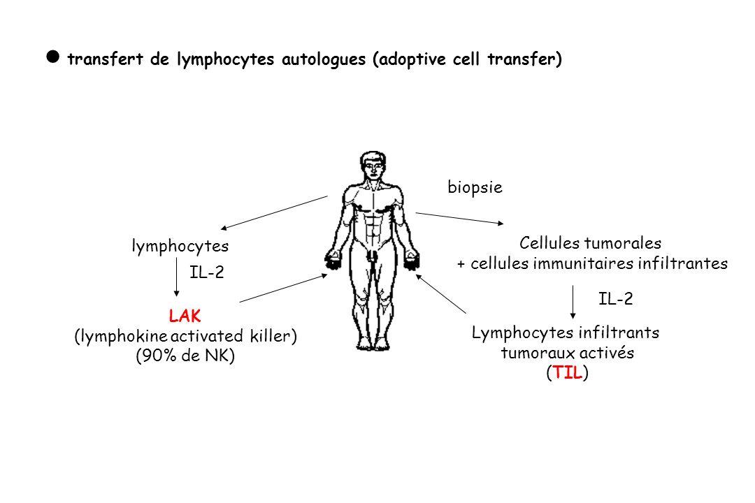 transfert de lymphocytes autologues (adoptive cell transfer) biopsie Cellules tumorales + cellules immunitaires infiltrantes IL-2 Lymphocytes infiltra