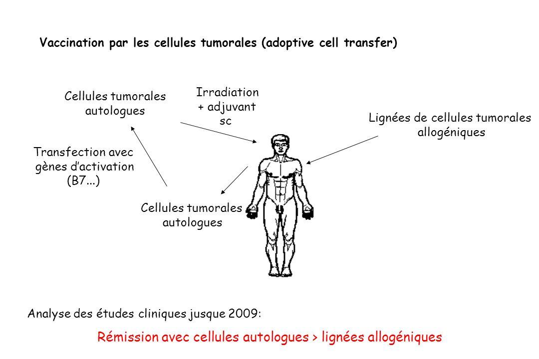 Vaccination par les cellules tumorales (adoptive cell transfer) Cellules tumorales autologues Cellules tumorales autologues Irradiation + adjuvant sc