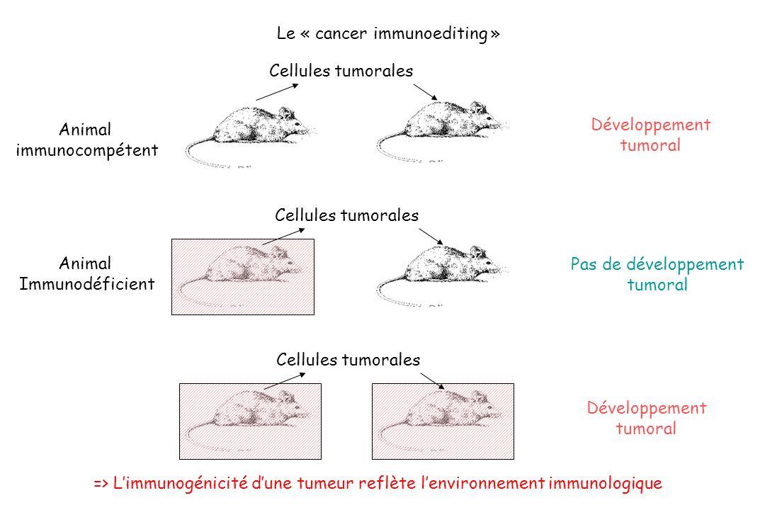 Développement tumoral Animal immunocompétent Cellules tumorales Animal Immunodéficient Pas de développement tumoral Cellules tumorales Développement t