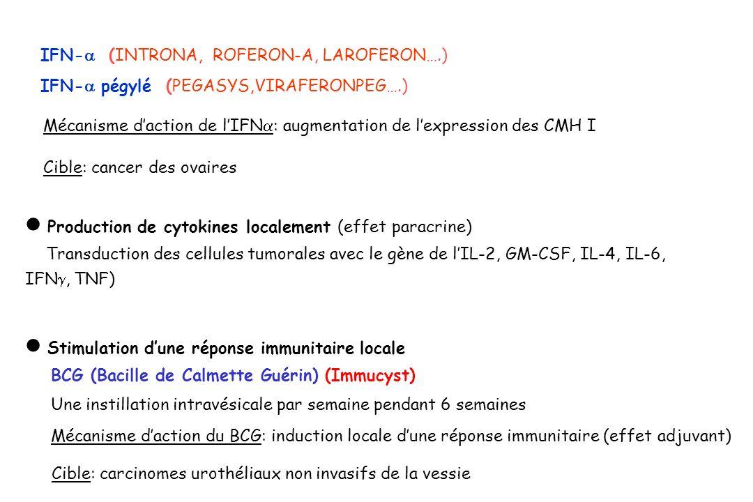 IFN- (INTRONA, ROFERON-A, LAROFERON….) IFN- pégylé (PEGASYS,VIRAFERONPEG….) Mécanisme daction de lIFN : augmentation de lexpression des CMH I Cible: c