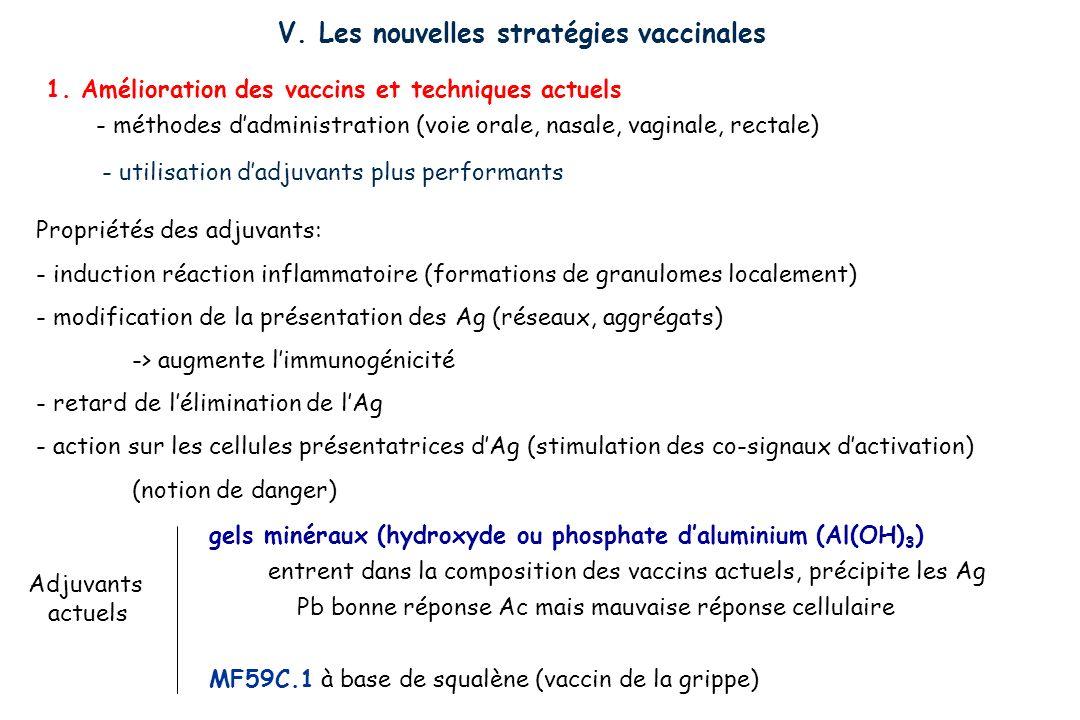 V. Les nouvelles stratégies vaccinales 1. Amélioration des vaccins et techniques actuels - méthodes dadministration (voie orale, nasale, vaginale, rec