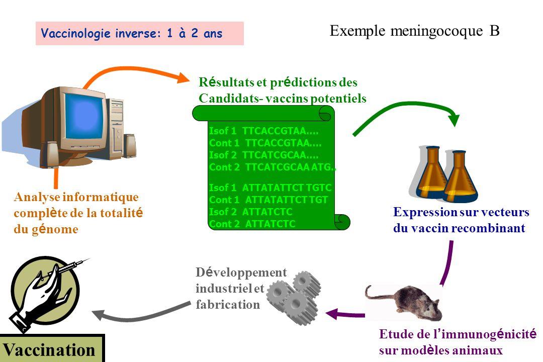 Analyse informatique compl è te de la totalit é du g é nome R é sultats et pr é dictions des Candidats- vaccins potentiels Isof 1 TTCACCGTAA…. Cont 1