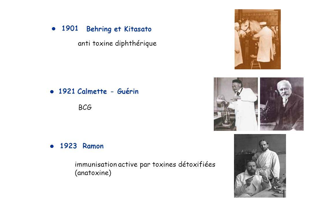 BCG 1921Calmette - Guérin Behring et Kitasato 1901 anti toxine diphthérique immunisation active par toxines détoxifiées (anatoxine) 1923 Ramon