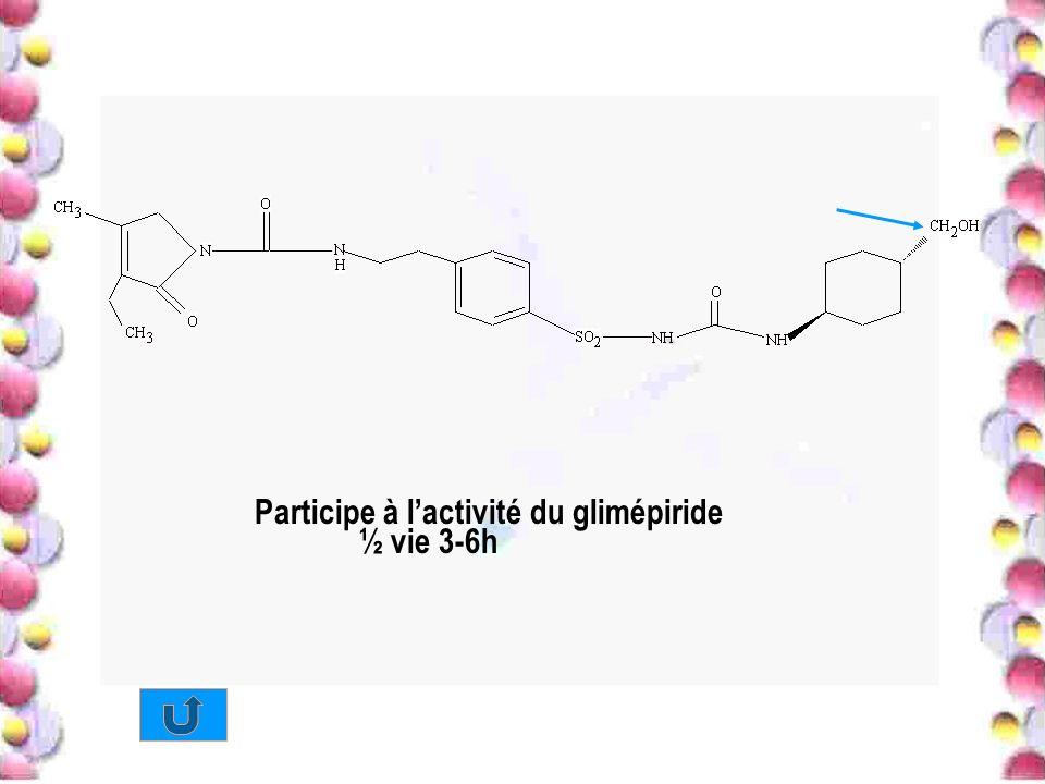 Participe à lactivité du glimépiride ½ vie 3-6h