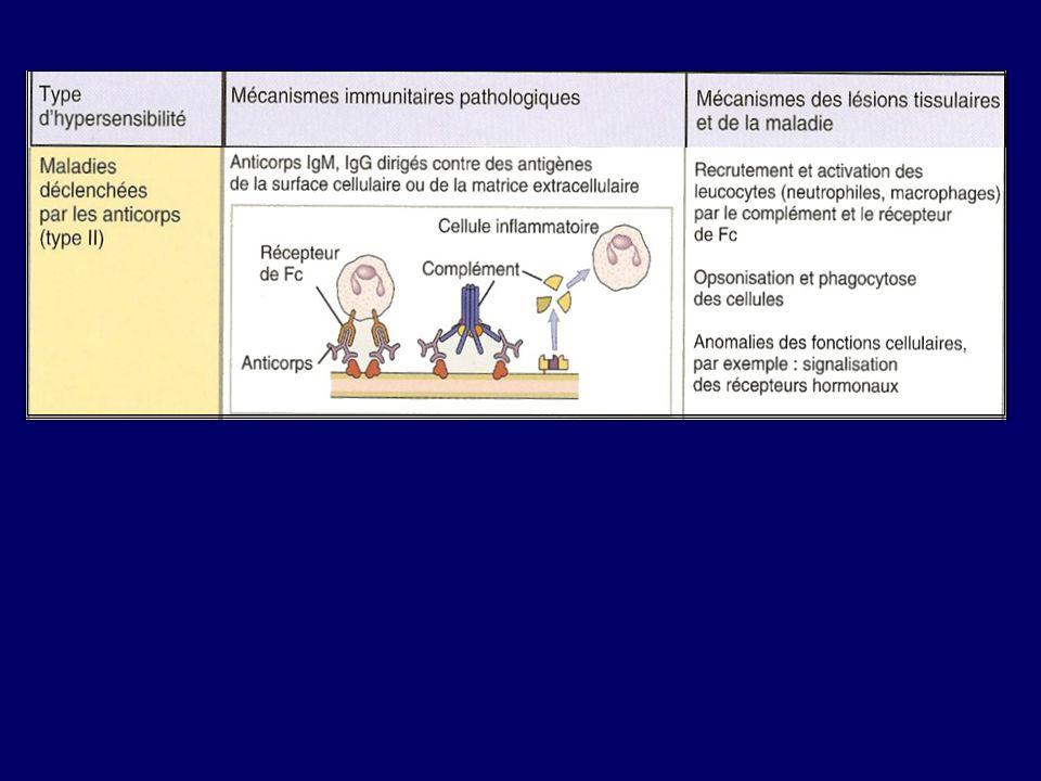 Pathologies associées à une HS type IIa 1- Ag fixé sur cellule sanguine : Cytopénies d origine immune GR Destruction Anémie hémolytique AlloAg A.h.