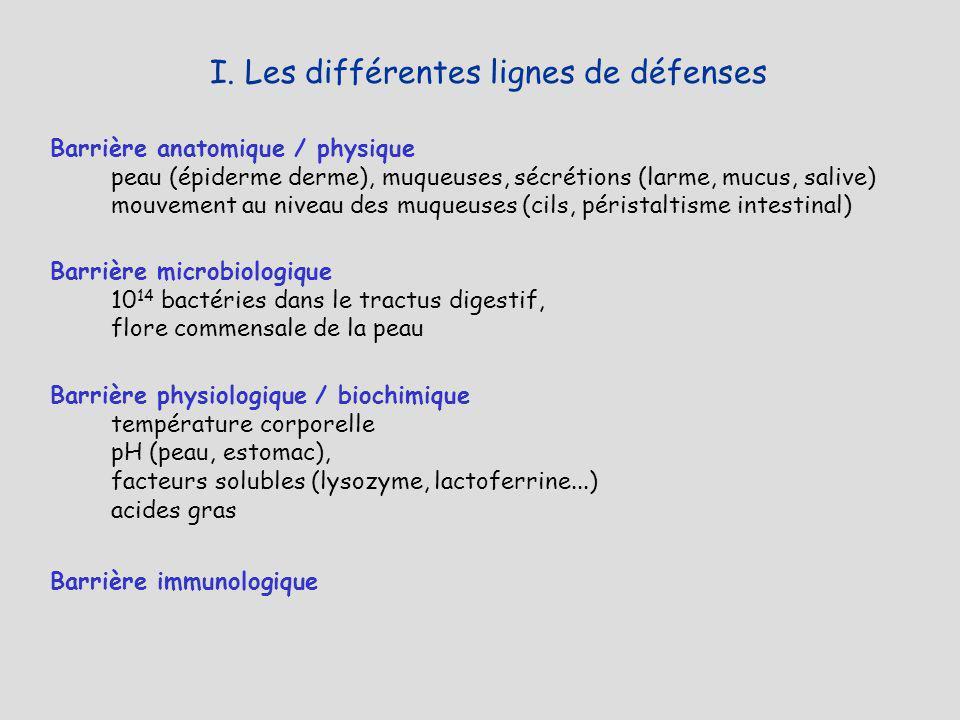 Barrière anatomique / physique peau (épiderme derme), muqueuses, sécrétions (larme, mucus, salive) mouvement au niveau des muqueuses (cils, péristalti