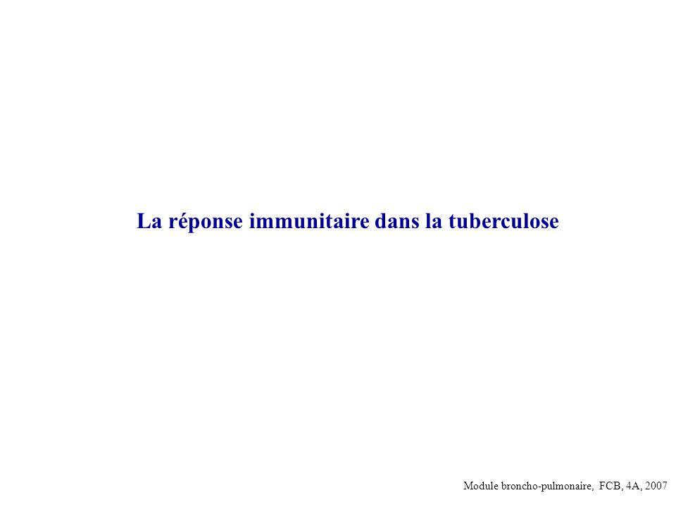 La réponse immunitaire dans la tuberculose Module broncho-pulmonaire, FCB, 4A, 2007