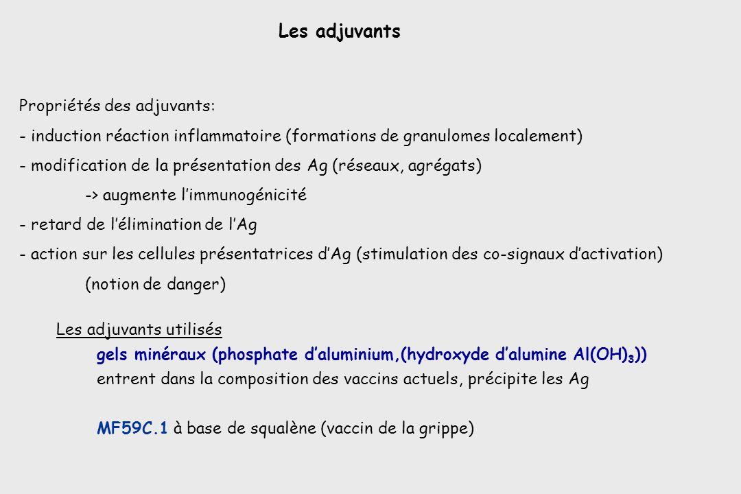 Les adjuvants Propriétés des adjuvants: - induction réaction inflammatoire (formations de granulomes localement) - modification de la présentation des