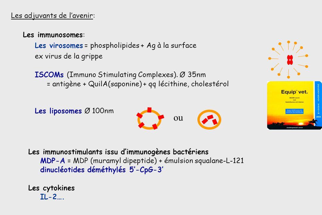 Les adjuvants de lavenir: Les immunosomes: Les virosomes = phospholipides + Ag à la surface ex virus de la grippe ISCOMs (Immuno Stimulating Complexes
