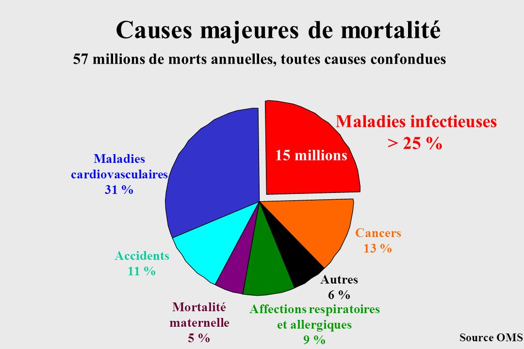 Maladies infectieuses > 25 % 15 millions Maladies cardiovasculaires 31 % Cancers 13 % Autres 6 % Affections respiratoires et allergiques 9 % Accidents