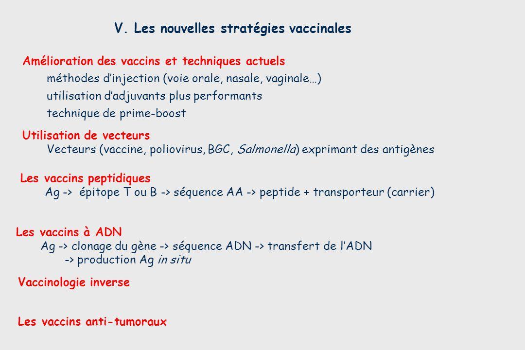 V. Les nouvelles stratégies vaccinales Les vaccins anti-tumoraux Les vaccins à ADN Ag -> clonage du gène -> séquence ADN -> transfert de lADN -> produ