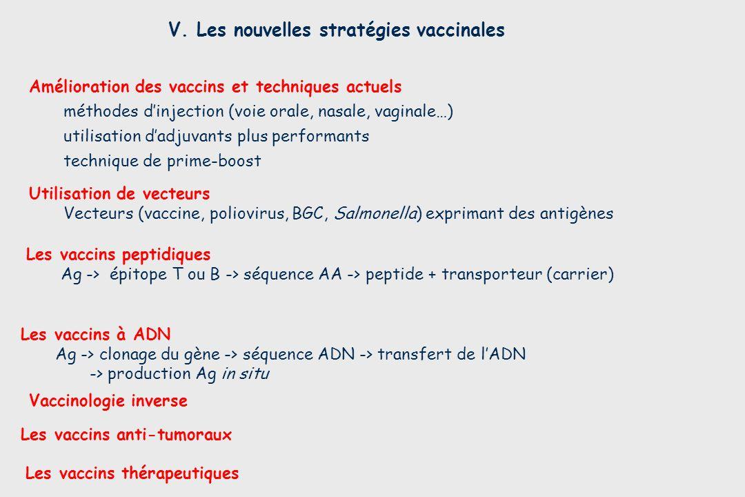 V. Les nouvelles stratégies vaccinales Les vaccins thérapeutiques Les vaccins à ADN Ag -> clonage du gène -> séquence ADN -> transfert de lADN -> prod