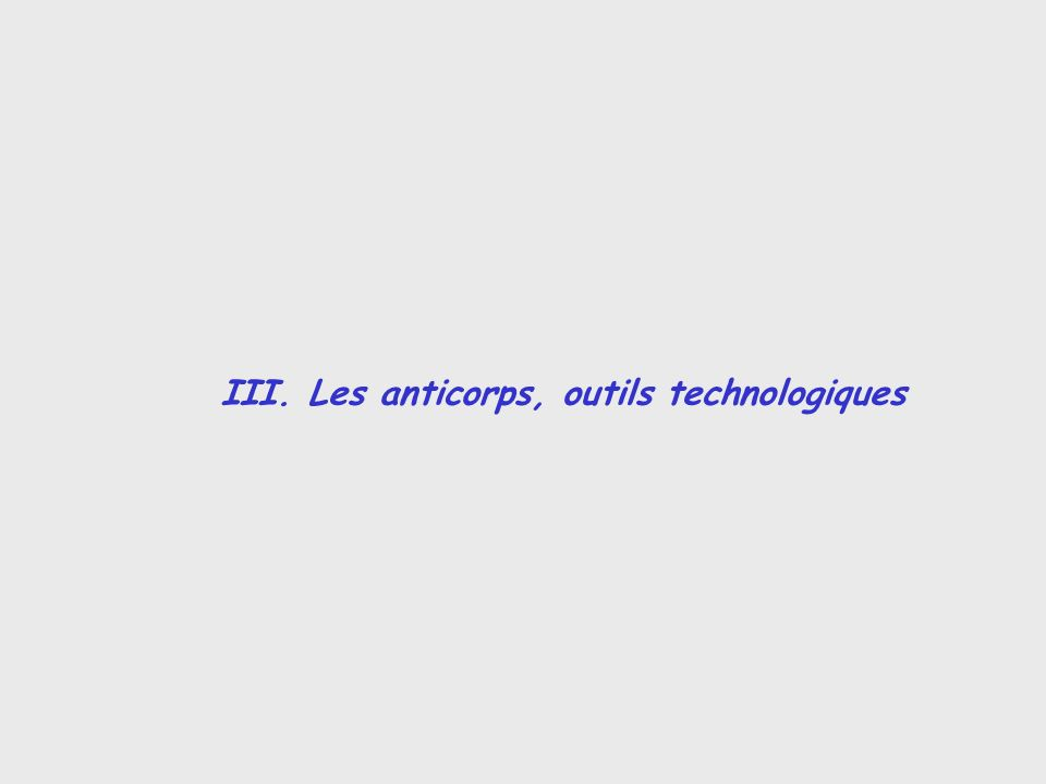 III. Les anticorps, outils technologiques