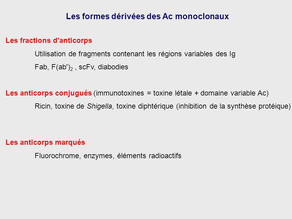 Les fractions d'anticorps Utilisation de fragments contenant les régions variables des Ig Fab, F(ab') 2, scFv, diabodies Les anticorps conjugués (immu