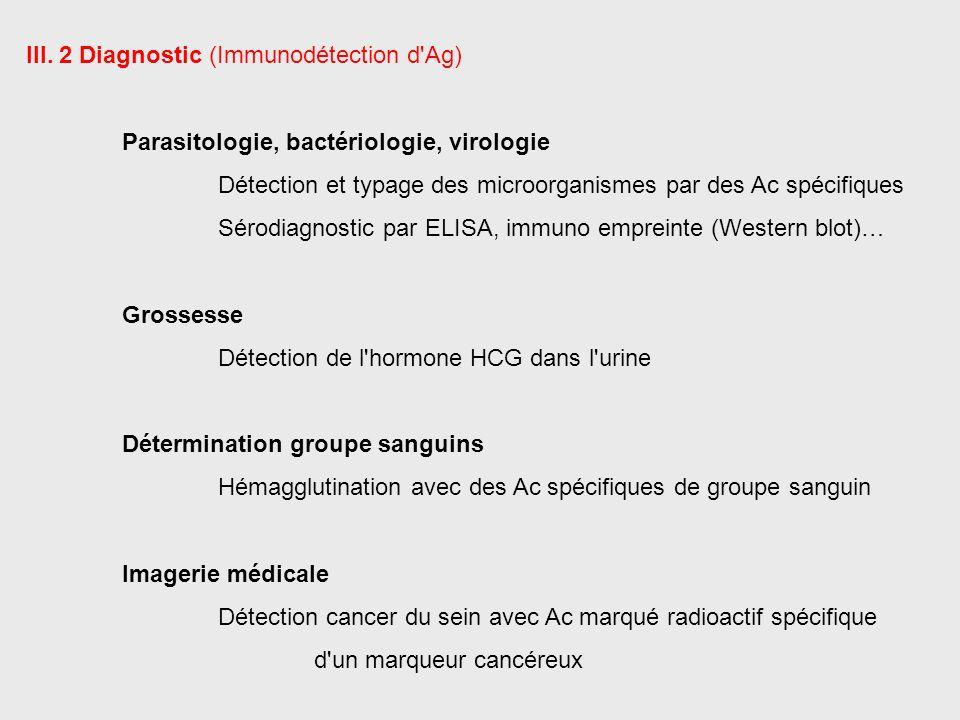 III. 2 Diagnostic (Immunodétection d'Ag) Parasitologie, bactériologie, virologie Détection et typage des microorganismes par des Ac spécifiques Sérodi