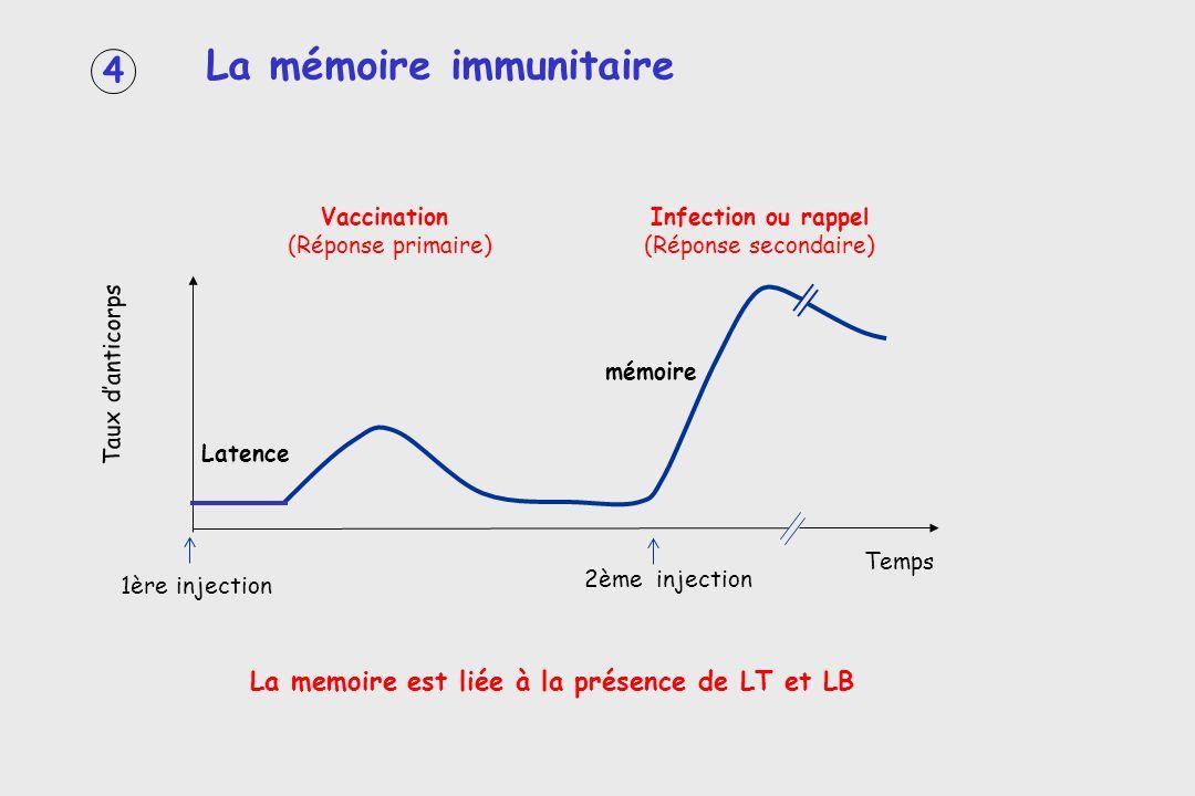4 La mémoire immunitaire La memoire est liée à la présence de LT et LB Taux danticorps Temps 1ère injection 2ème injection Vaccination (Réponse primai