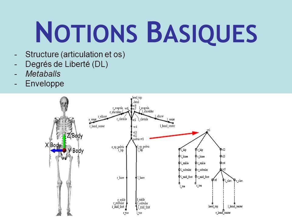N OTIONS B ASIQUES -Structure (articulation et os) -Degrés de Liberté (DL) -Metaballs -Enveloppe