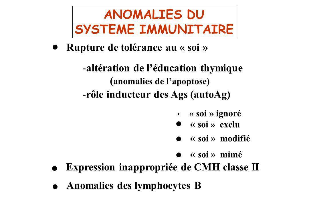 ANOMALIES DU SYSTEME IMMUNITAIRE Rupture de tolérance au « soi » -altération de léducation thymique ( anomalies de lapoptose) -rôle inducteur des Ags