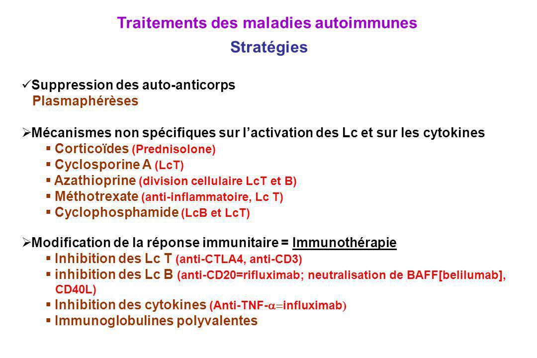 Traitements des maladies autoimmunes Stratégies Suppression des auto-anticorps Plasmaphérèses Mécanismes non spécifiques sur lactivation des Lc et sur