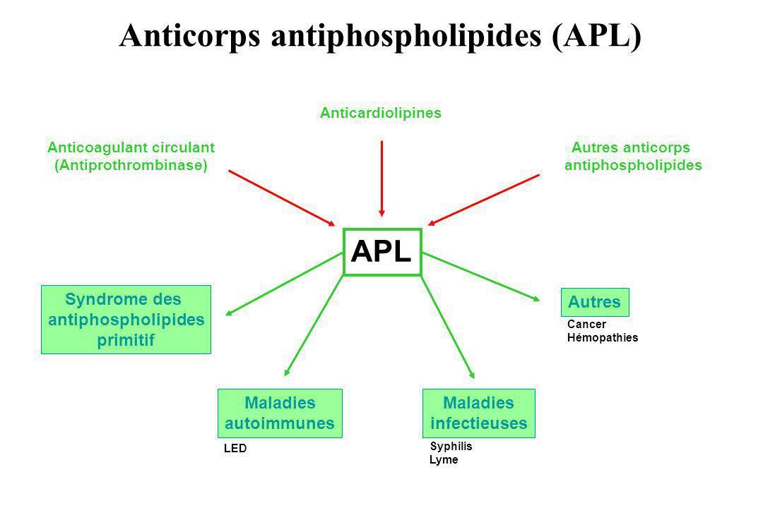 Anticorps antiphospholipides (APL) APL Anticardiolipines Autres anticorps antiphospholipides Anticoagulant circulant (Antiprothrombinase) Syndrome des
