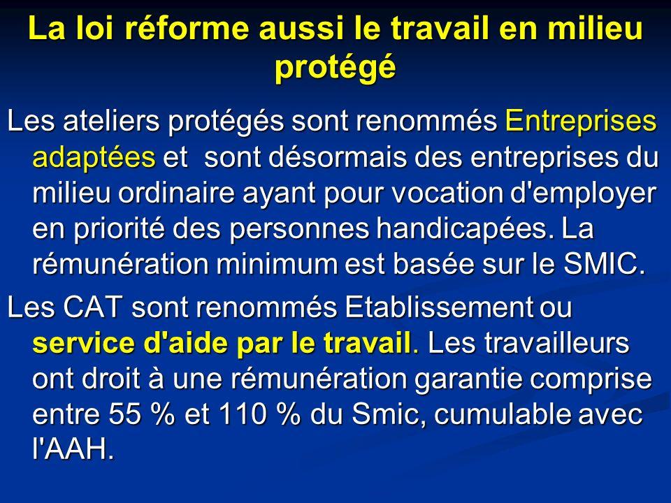 La loi réforme aussi le travail en milieu protégé Les ateliers protégés sont renommés Entreprises adaptées et sont désormais des entreprises du milieu