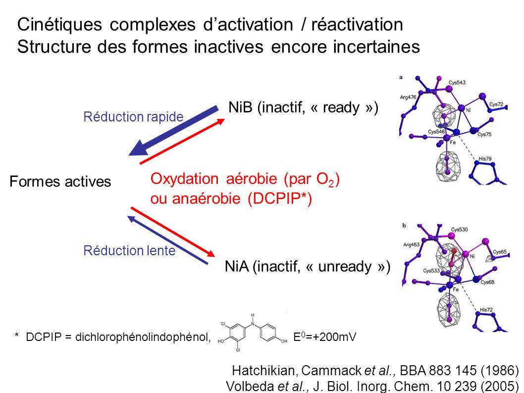 Les applications des hydrogénases requièrent quelles fonctionnent même en présence de dioxygène Vincent et al., Chem.