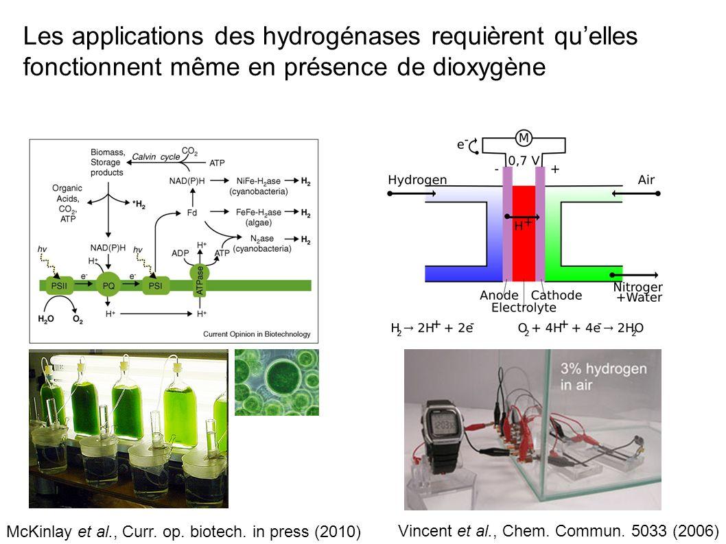 Hoeben et al, ACS NANO 12 2497 (2008) A vinosum H 2 ase, pH 6, 1.5mV/s Si + 500nm SiO 2 + 30nm Au + 300nm PMMA Des électrodes qui interagissent avec les hydrogénases Nanoélectrode dor + polymyxine 100x100 nm 2