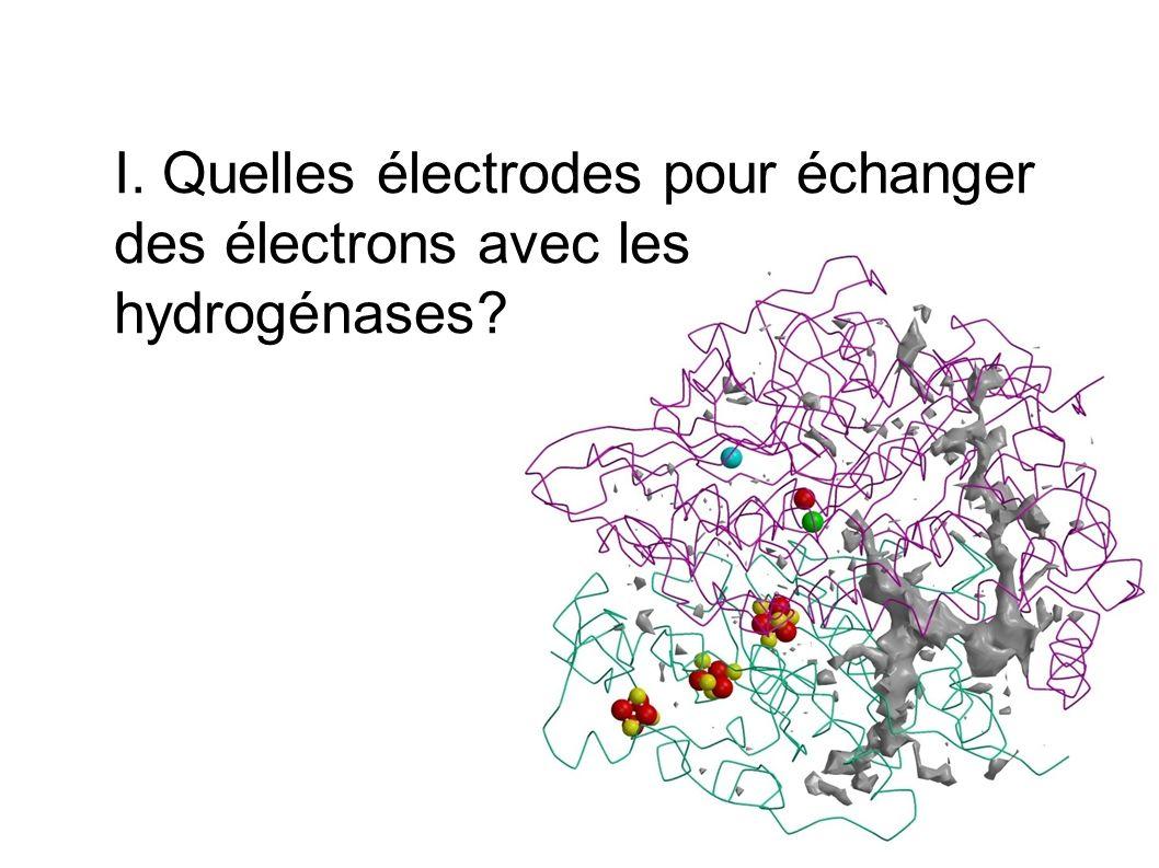 Des électrodes qui interagissent avec les hydrogénases Electrode dor + noir de carbone Hydrogénase de Thiocapsa roseopersicina, adsorbée sur or recouvert de noir de carbone INTRODUCTION: « The investigation of enzymes as catalysts for electrochemical processes is a novel area of chemical enzymology.