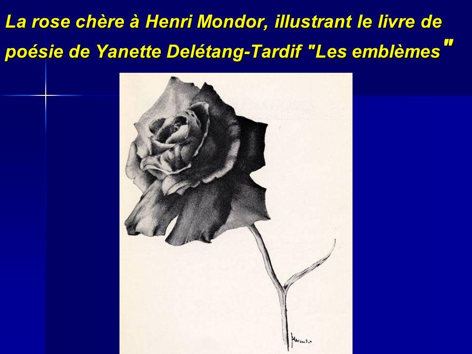 La rose chère à Henri Mondor, illustrant le livre de poésie de Yanette Delétang-Tardif