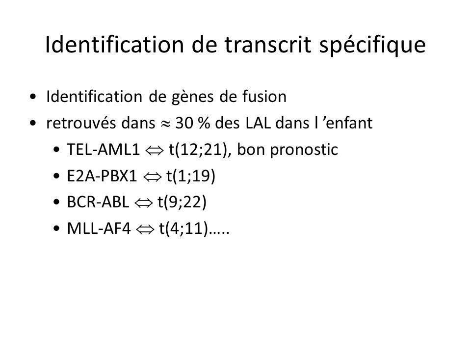 Identification de transcrit spécifique Identification de gènes de fusion retrouvés dans 30 % des LAL dans l enfant TEL-AML1 t(12;21), bon pronostic E2