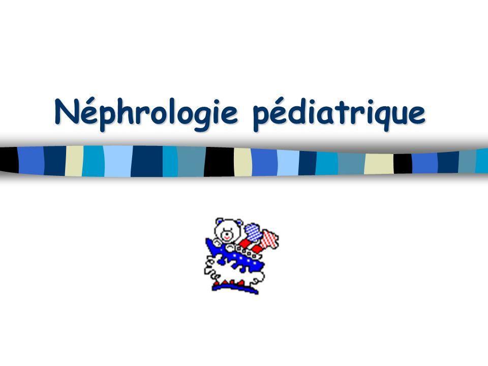 Néphrologie pédiatrique