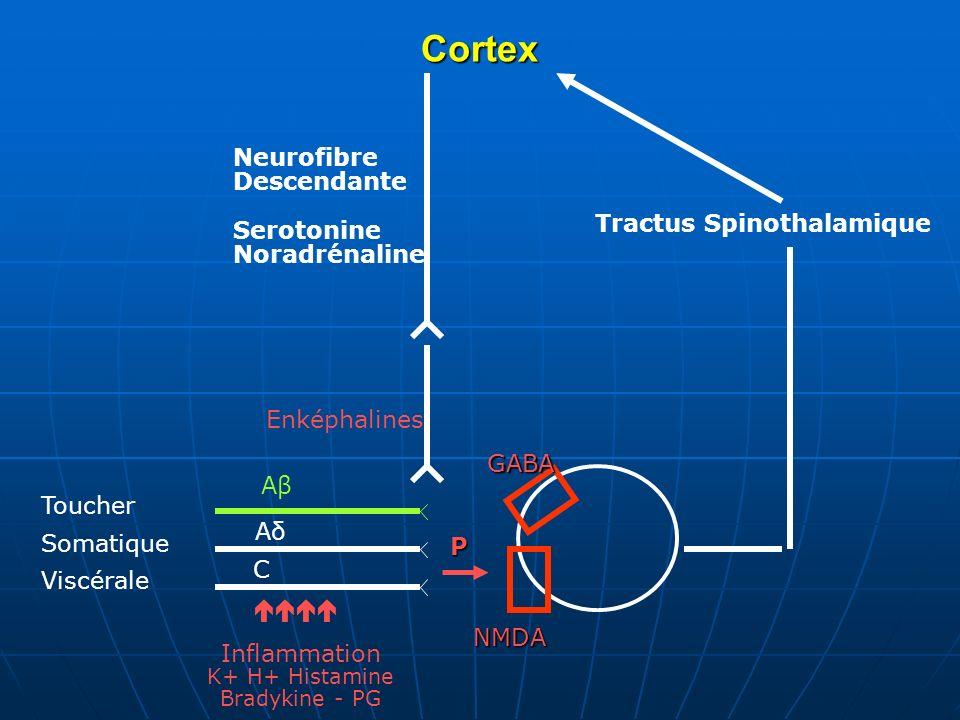 CortexGABA NMDA P Neurofibre Descendante Serotonine Noradrénaline Tractus Spinothalamique AβAβ AδAδ C Toucher Somatique Viscérale Inflammation K+ H+ H