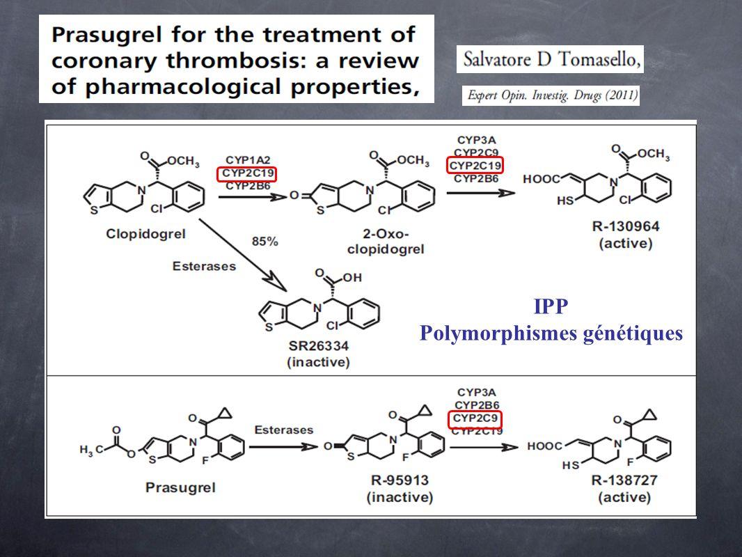 IPP Polymorphismes génétiques