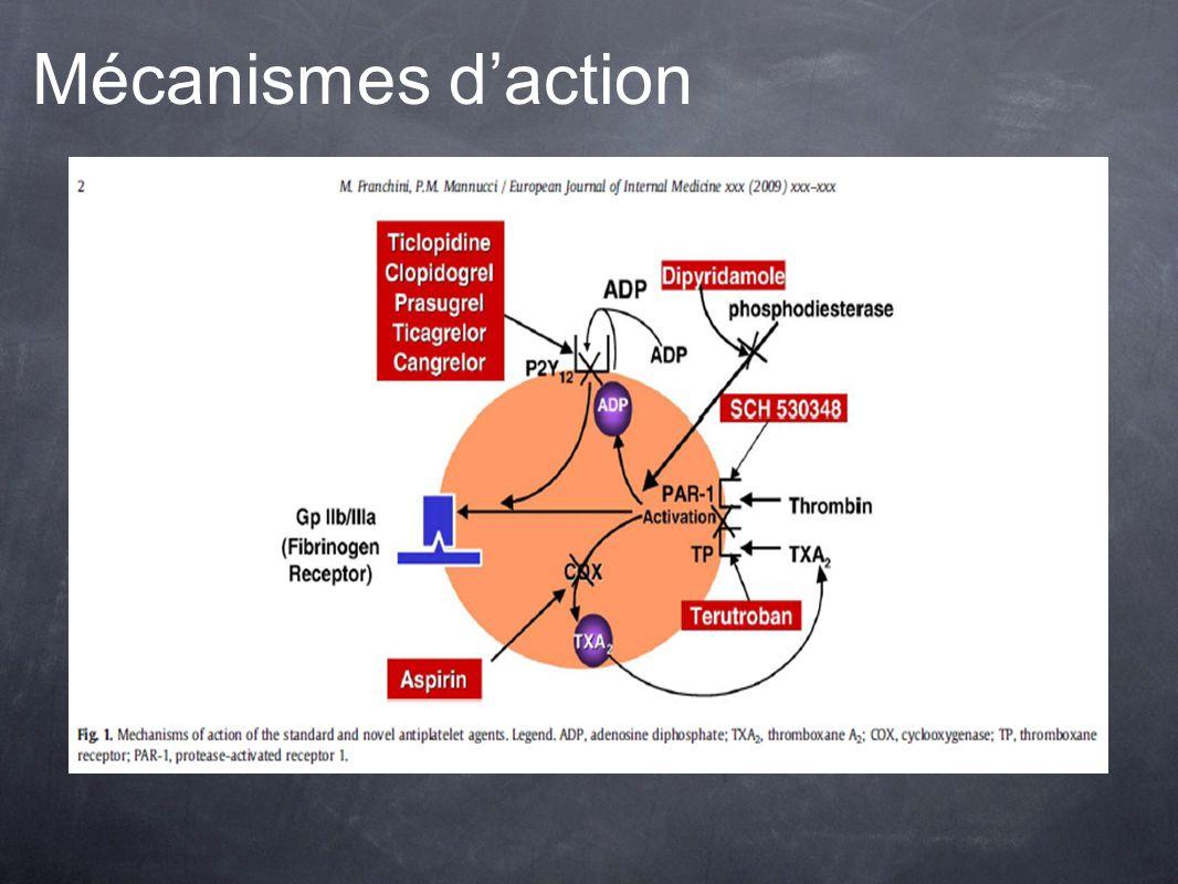 Mécanismes daction
