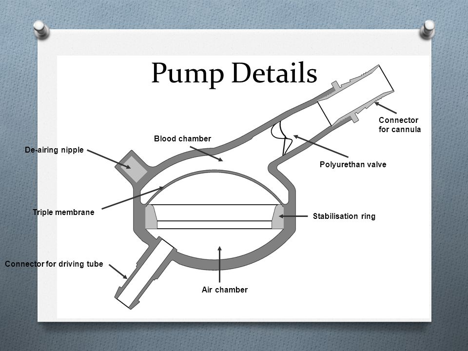 Pump Details Blood chamber Air chamber Connector for driving tube Stabilisation ring Connector for cannula Polyurethan valve Triple membrane De-airing
