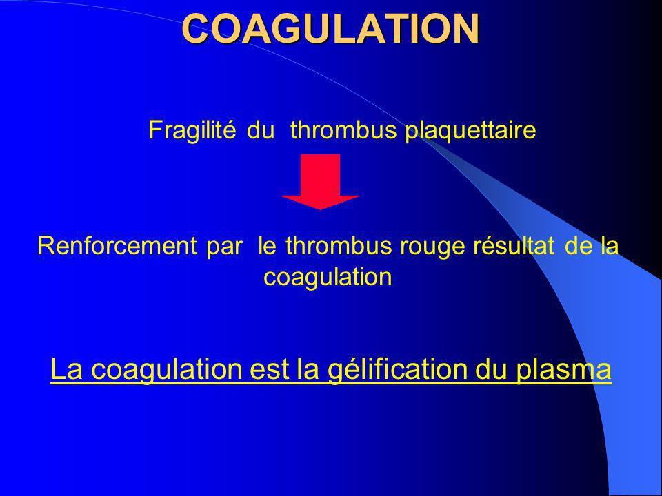COAGULATION Fragilité du thrombus plaquettaire Renforcement par le thrombus rouge résultat de la coagulation La coagulation est la gélification du pla